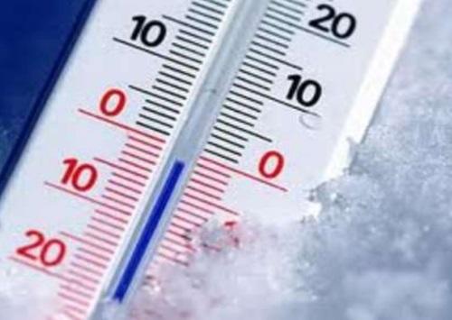 Низкие и высокие температуры от клопов