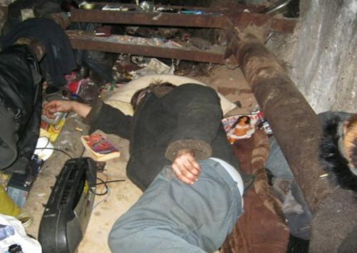 Клопы в подвале