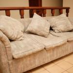 Как правильно вывести домашних клопов из любимого дивана?